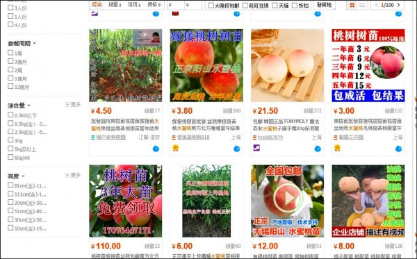 陳男網購中國水蜜桃,在台灣海關被查獲,因此被依違反植物防疫檢疫法送辦。(擷取自淘寶網)