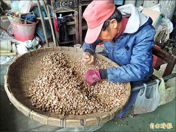 去年花生量少價揚,種豆價格也上漲。(記者陳燦坤攝)