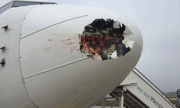 埃及航空一架客機飛往倫敦希斯洛機場時撞上一隻飛鳥,但沒想到機頭竟被撞穿一個大洞,所幸飛機安全降落且無人傷亡。(圖擷自Airline.ee/Twitter)