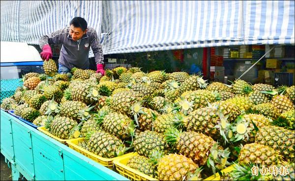 關廟鳳梨上市,農會將採消費地行銷策略,到新北市展售優質鮮果。(記者吳俊鋒攝)
