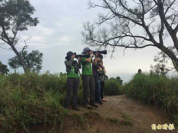 民眾用大砲型專業相機捕捉灰面鵟鷹。(記者張聰秋攝)