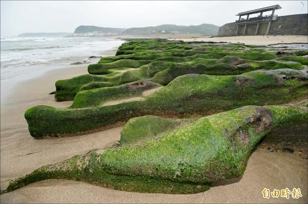 老梅綠石槽景觀區尚未受到污染,後續將視必要性封閉(記者林正堃攝)