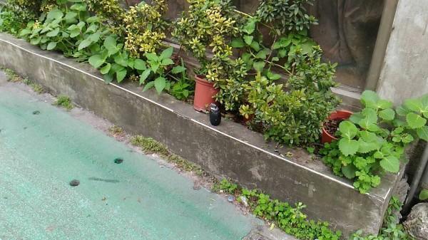 台北市農安街發現疑似手榴彈。(記者劉慶侯翻攝)