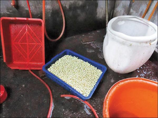 台中市衛生局去年查獲有民眾違法使用工業用雙氧水漂白蓮子。 (資料照,台中市衛生局提供)