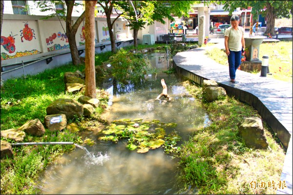 六龜區荖濃國小生態池有多種植物與小型魚類共生,蚊子幼蟲(孑孓)為食物來源之一。(記者陳祐誠攝)