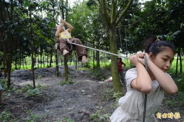 吳晟樹園化身「叢林學校」,學生樂在其中。(記者顏宏駿攝)