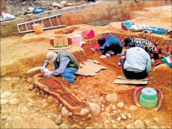台中去年在安和路遺址發現距今4800年前的考古人骨。(圖:屈慧麗提供)