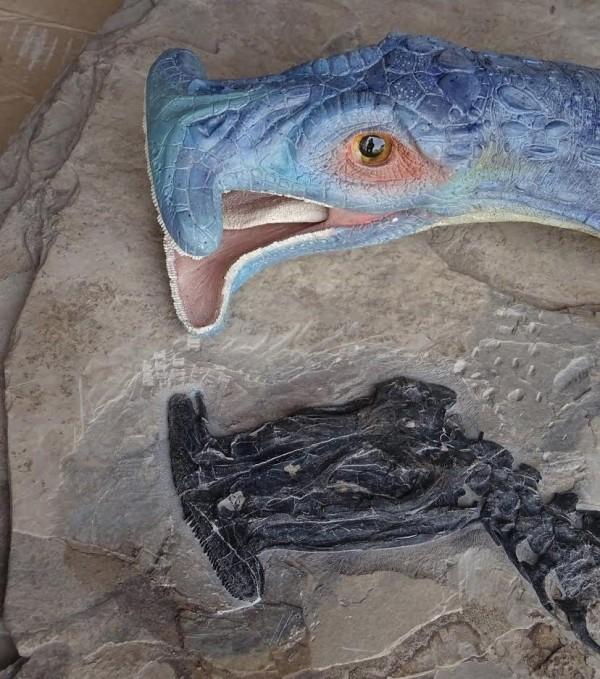 史前海怪「奇異濾齒龍」近日復原的形象顯示,牠約為鱷魚的大小,並擁有類似雙髻鯊的「錘子頭」頭骨結構,及3種類型的牙齒。(圖擷取自The Guardian)