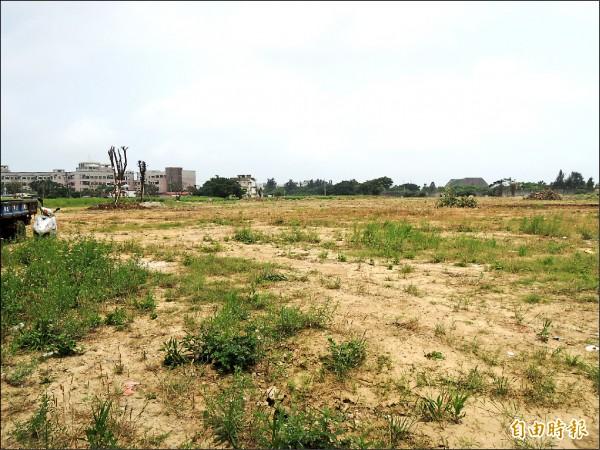 新竹市府教育處在虎林國中旁要闢虎林簡易棒球場,但一月動土後,四個月過去了,卻毫無動靜,仍是一片荒地蔓草,讓喜愛棒球運動者憂心能否如期完成。(記者洪美秀攝)