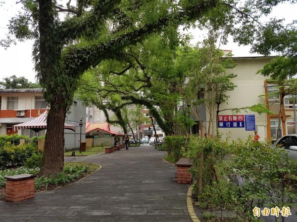 羅大佑童年榕樹下,命名「陽明老樹廣場」(記者簡惠茹攝)