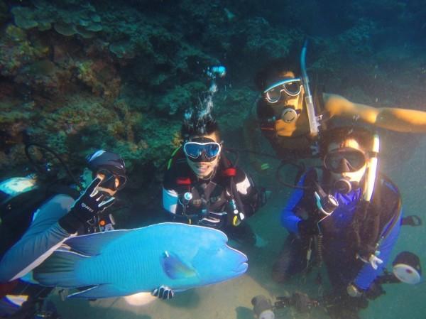 潛水愛好者製作了保麗龍「假蘇眉」在墾丁海底悼念。(記者蔡宗憲翻攝)