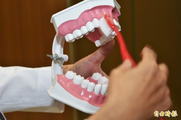 預防牙周病不能單靠刷牙,還要定期去牙科治療。(記者張忠義攝)