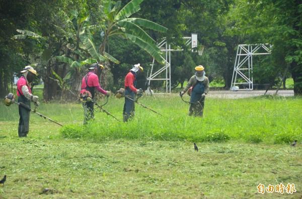 梅雨季節過後,蚊子又來了,加強除草及環境清除最為重要。(記者葉永騫攝)