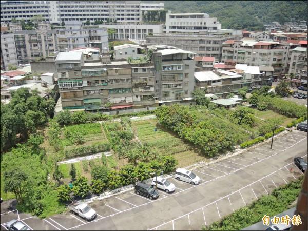 圓通禪寺土地現為菜園及停車使用。(記者翁聿煌攝)