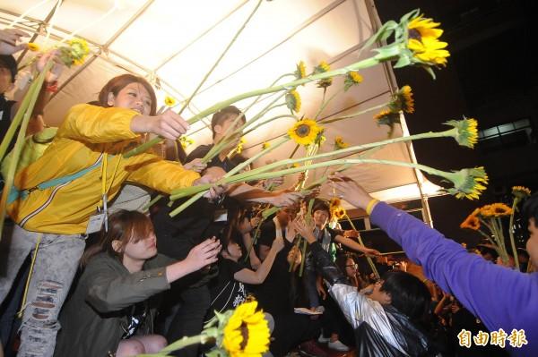 圖為太陽花學運,學生們將太陽花傳遞下去,象徵學運火種不息。(資料照,記者廖振輝攝)