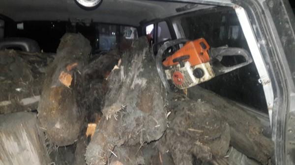 李姓男子開著沒有懸掛車牌的吉普車,摸黑前往中、苗交界的大安溪河床,搬了200多公斤的紅檜、肖楠木殘材。(記者彭健禮翻攝)