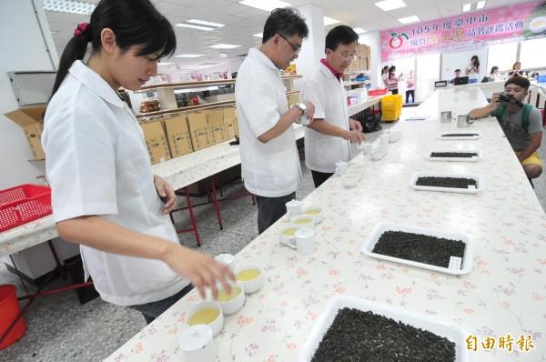 茶改場三位評審委員,針對入圍決賽的五種梨山茶葉,進行外觀及香氣評鑑。(記者李忠憲攝)