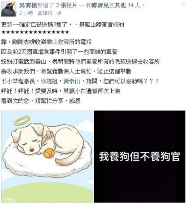 高雄愛媽吳宥榛表示,陸軍官校棄養3隻狗狗。(圖擷自臉書)