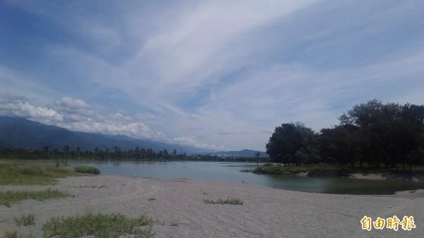 知本濕地生態豐富,保育團體要求劃設為「國家級濕地」。(記者陳賢義攝)
