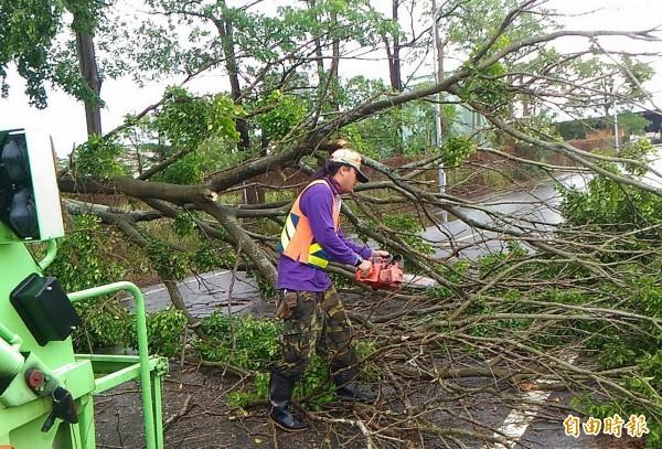 颱風過後,南市環保局動員近600名清潔人力,及車輛機具清理,迅速恢復市容。(記者蔡文居攝)