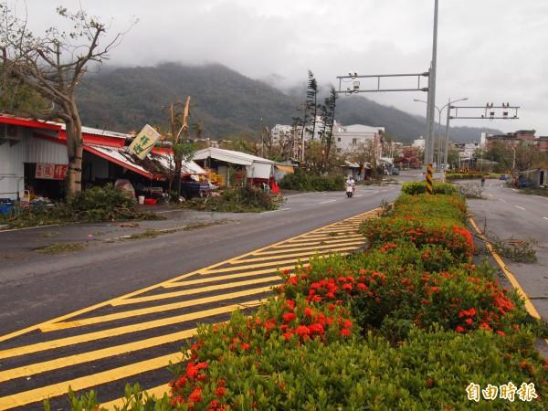 強颱尼伯特此次重創台東,除了店家及住家受到破壞,樹木也被大雨及強風摧殘得七零八落,嚴重影響了生態。示意圖與事件無關。(資料照)