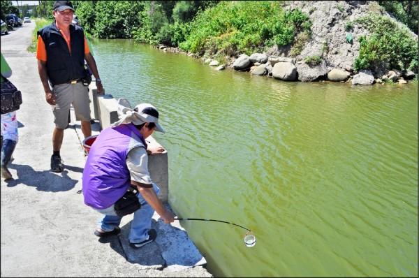環保署與市府從民國一○一年四月起,針對社子溪等十一條河川執行「桃園藻礁污染源督察管制計畫」,圖為志工採樣檢測水質。(記者周敏鴻攝)