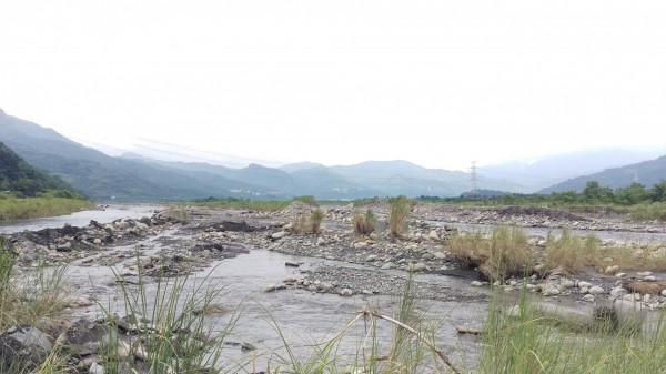 警消在濁水溪畔找尋在河床活動的二人,卻因現場滿是芒草遲遲未尋獲。(記者劉濱銓翻攝)