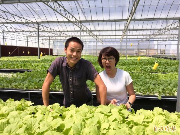 青農創業正夯,王藝蓉姊弟合租3分農地平均月營收30萬元。(記者李容萍攝)
