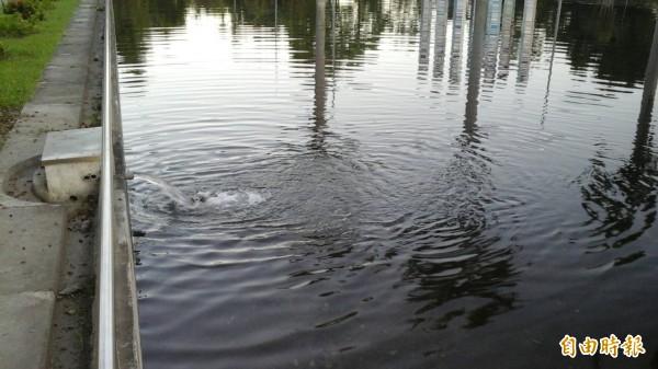 水源不斷注入半月池。(記者洪定宏攝)