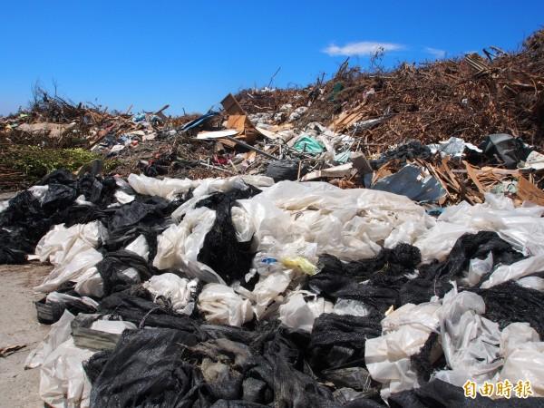 捷地爾只限樹枝進入,環保局呼籲民眾垃圾類請清潔隊,或自行運往建農掩埋場。(記者王秀亭攝)