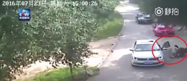 2名中國女遊客在北京延慶八達嶺野生動物園猛獸區下車,遭老虎咬1死1傷。(圖片取自《央視》)