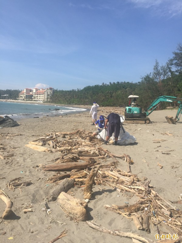 保育志工忙清運海灘上漂流木。(記者張存薇攝)