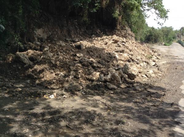 鳳山丘陵疑遭盜挖,影響候鳥棲息。(記者黃旭磊翻攝)