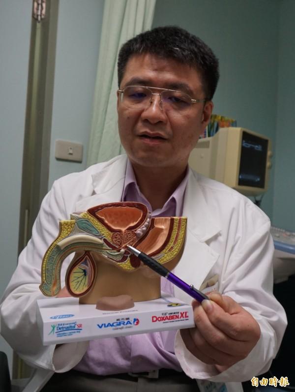 醫師劉昌懋指這名阿公攝護腺肥大,擠壓尿道,排尿困難,造成殘餘尿過多累積結晶沉澱變結石。(記者蔡淑媛攝)