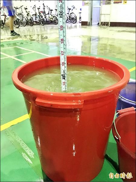 佳中活動中心鐵皮屋漏水,連日大雨,禮堂內下起「瀑布」,「水桶再多也不夠接」。(記者陳彥廷攝)