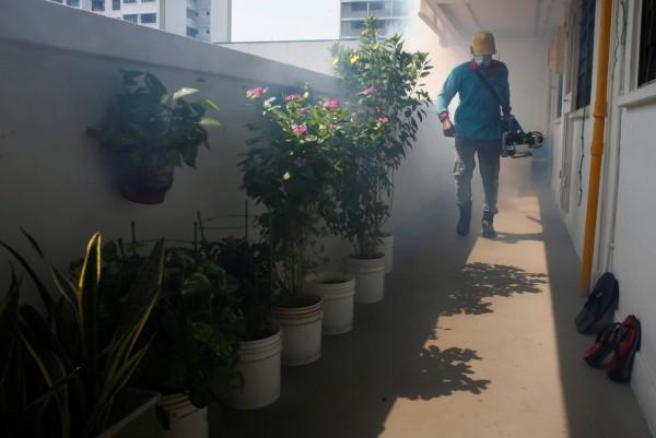 新加坡爆發茲卡感染疫情,外交部調升星國旅遊警示燈號為「灰色」,並提醒在星國人注意周遭環境衛生。(路透)