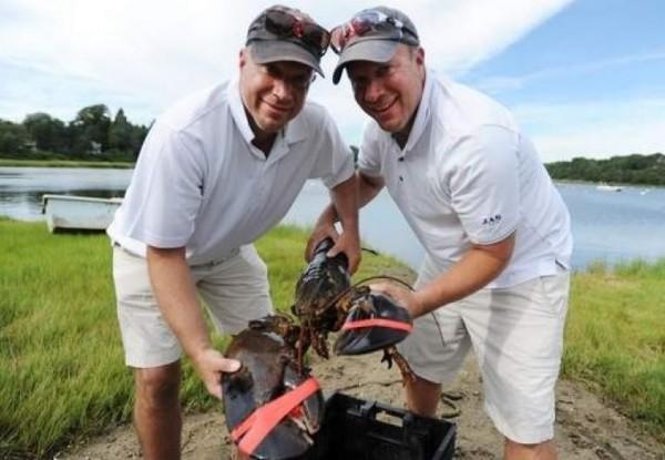 美國麻省1對雙胞胎兄弟買了1隻150歲的龍蝦,並將其放生,不料才剛放生2天內龍蝦就死亡,遭網友批評放生即殺生。(擷取自推特)
