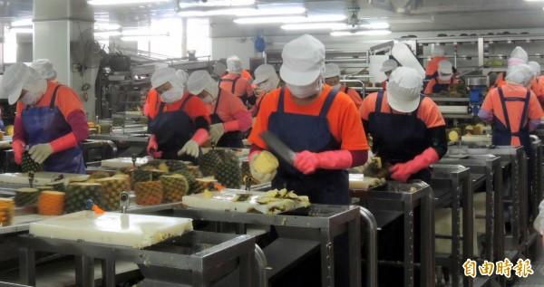 微熱山丘員工忙著削鳳梨準備鳳梨酥所需材料。(記者謝介裕攝)