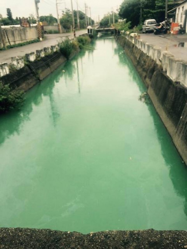 和美鎮田尾排水支流被民眾發現變成綠色,懷疑上游工廠偷排廢水。(記者湯世名翻攝)