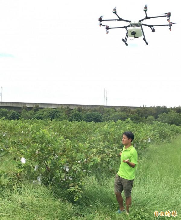 農業局試辦無人飛機高空噴灑農藥與葉面施肥,農民只需遠端監控,確保身體健康。(記者陳文嬋攝)