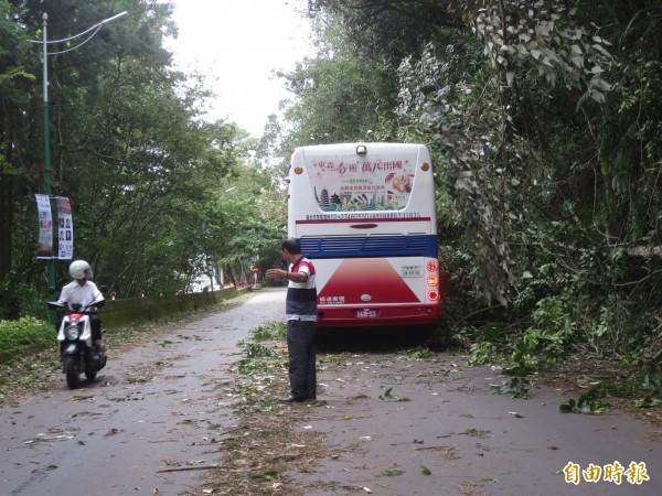 強颱莫蘭蒂襲台,日月潭環潭公路發生多起樹倒意外,其中就有遊覽車遭砸中,幸好未有人員受傷。(記者劉濱銓攝)
