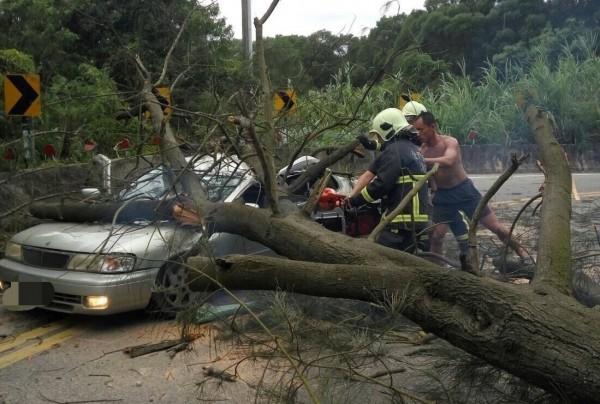 金門1輛轎車遭風倒木擊中,幸好駕駛送醫暫無大礙。(圖由金湖消防分隊提供)