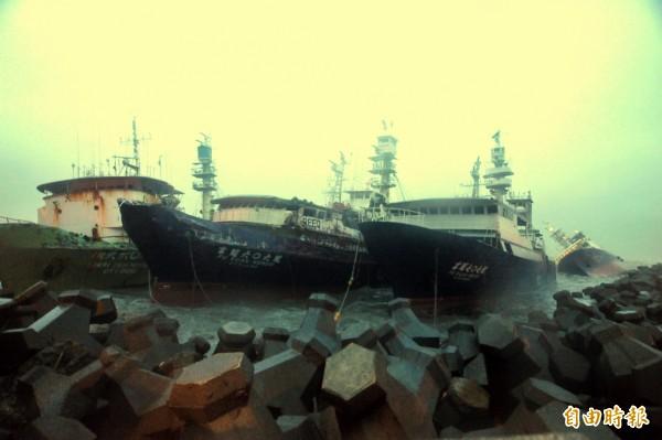 許多漁船為避風頭,停靠港中。但停在高雄西子灣北側防波堤的漁船,傳出仍因風勢太大發生碰撞,致1人落海的意外。(記者黃志源攝)