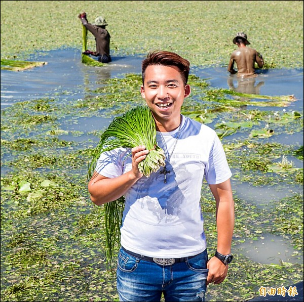 美濃野蓮不怕風雨,災後市場一枝獨秀,農民笑呵呵。(記者陳文嬋攝)