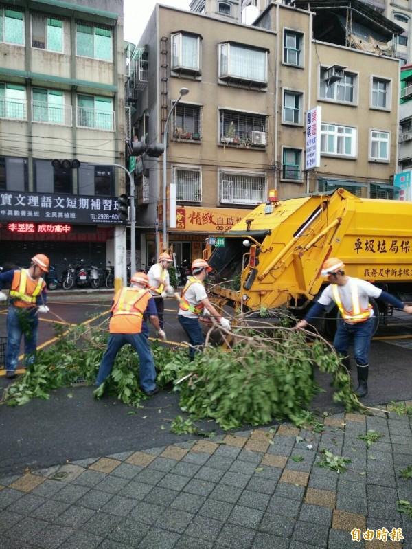 梅姬颱風造成路樹傾倒、樹枝斷落,影響市容也影響通行,新北市清潔隊員一早就動員展開清理。(記者何玉華攝)