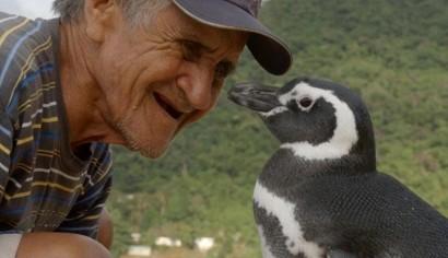 麥哲倫企鵝「丁丁」曾經滿身油污、在帕爾納奥卡海灘上奄奄一息,所幸在救命恩人狄蘇薩(左)的細心照料之下恢復健康。(圖擷自推特)