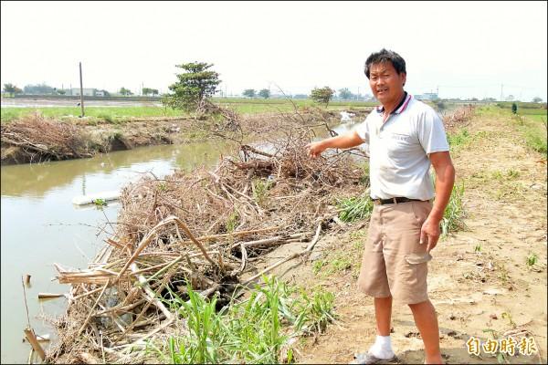 朴子市民黃良文表示雜木占據半個河道,是大淹水罪魁禍首。(記者蔡宗勳攝)