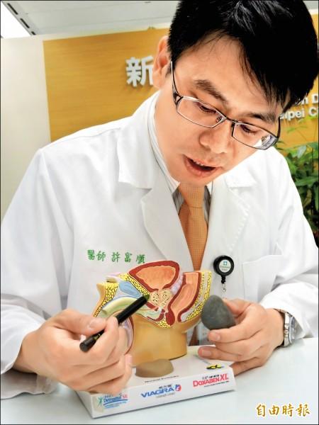 許富順醫師指出攝護腺位置,但張老先生的攝護腺腫瘤是正常人的4倍,相當於左手拿的石頭大小。(記者何玉華攝)