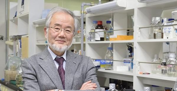 日本籍的分子細胞生物學家大隅良典,拿下2016諾貝爾醫學獎。(圖擷取自東京工業大學網站)