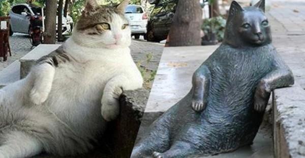 當地人在貓咪過世後特地做了一個雕像來紀念牠。(圖擷取自hurriyetdailynews)